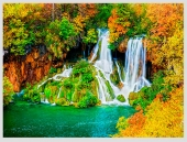 Mê mẩn ngắm những mùa cây thay lá 'long lanh' nhất thế giới