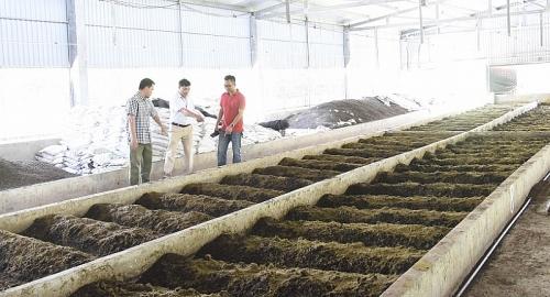 Chung tay bảo vệ môi trường: Ghi nhận ở huyện Gia Lâm