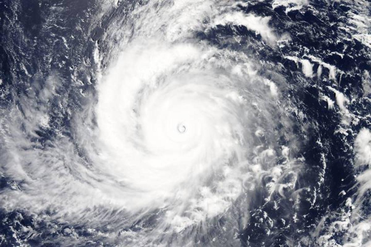 Biển Đông sắp có bão lớn, diễn biến khó lường khi tương tác với không khí lạnh