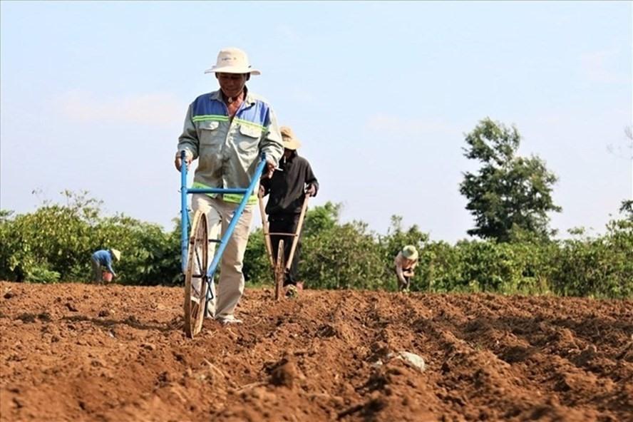 Những đối tượng chịu trách nhiệm trước Nhà nước về việc sử dụng đất
