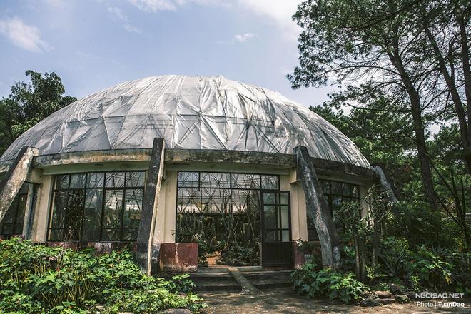 \'Công viên kỷ Jura\' thu nhỏ ấn tượng ở Hà Nội
