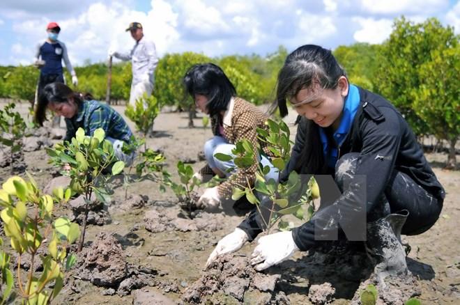 EU tăng cường hỗ trợ Việt Nam ứng phó với biến đổi khí hậu