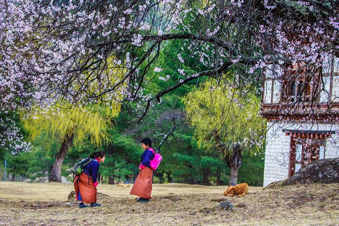 Vẻ đẹp xứ sở Bhutan qua góc nhìn nhiếp ảnh gia Việt