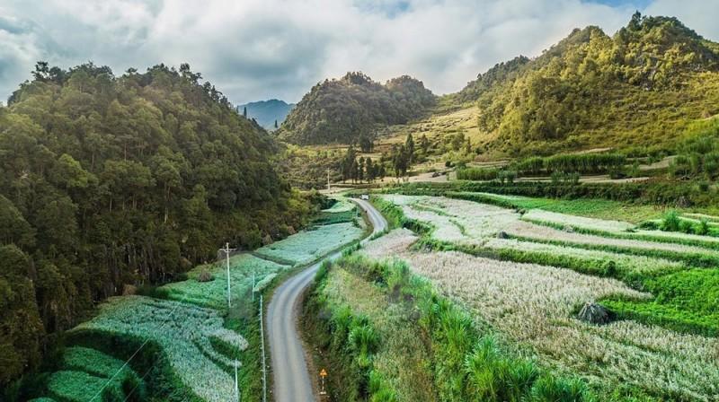 Chiêm ngưỡng vẻ hùng vĩ tuyệt đẹp của núi rừng Hà Giang