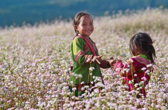 Cuối tháng 11, nhớ đến Hà Giang tham gia Lễ hội hoa tam giác mạch