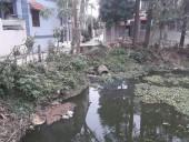 Hải Bối, huyện Đông Anh: Mương tưới tiêu bị ô nhiễm nặng