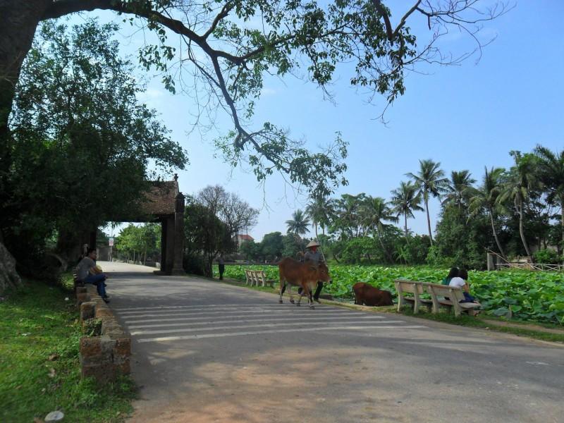 Thị xã Sơn Tây: Nỗ lực phát triển du lịch làng cổ