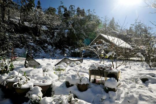 Khi băng tuyết phủ khắp bốn bề - Ảnh: Sưu tầm