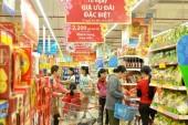 Xây dựng bảng phân loại tiêu dùng theo mục đích của hộ gia đình Việt Nam