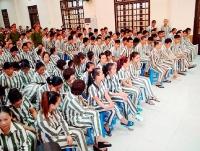 Phạm nhân được tham gia bảo hiểm xã hội tự nguyện