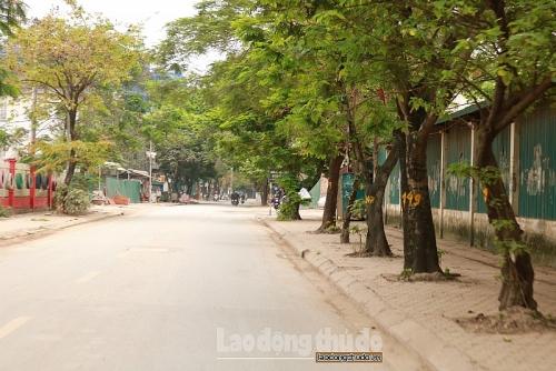 Người dân ủng hộ việc kéo dài thời gian cách ly xã hội tại Hà Nội