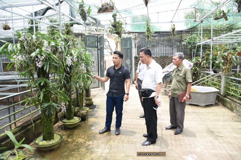 Quốc Oai về đích huyện nông thôn mới