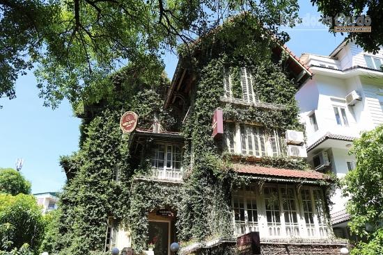Ngắm ngôi biệt thự phủ dây leo xanh mát ở Hà Nội