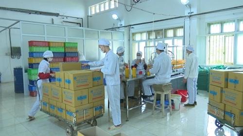 Công đoàn Công ty Vetvaco chú trọng chăm lo đời sống việc làm cho người lao động