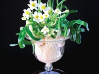 Thanh tao gửi bát hoa này