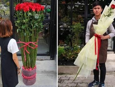 3 loại hoa hồng