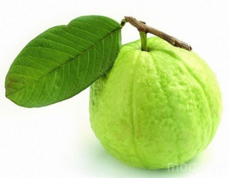 10 lợi ích của trái ổi đối với sức khỏe