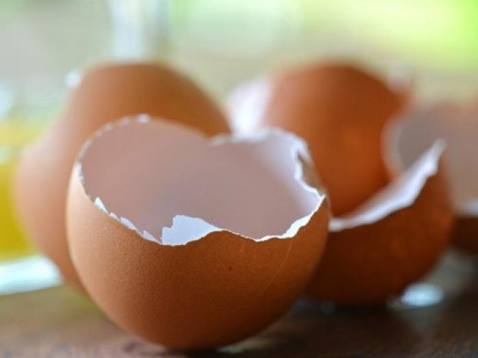 Những công dụng tuyệt vời của vỏ trứng