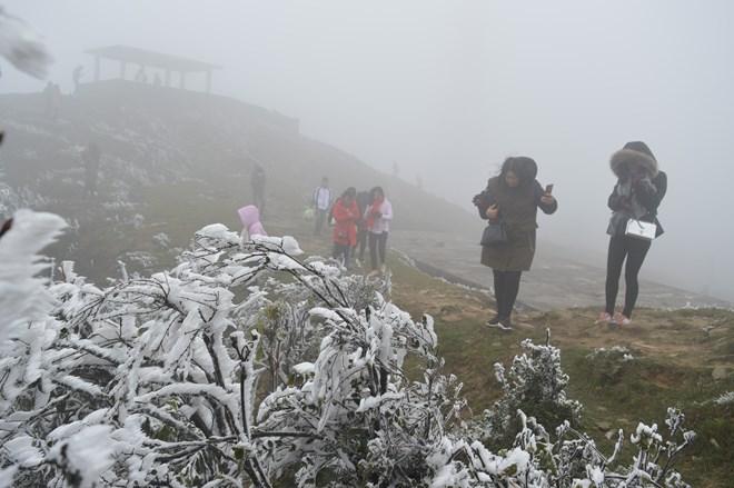 Tuyết tiếp tục phủ trắng xóa tại nhiều vùng miền núi phía Bắc