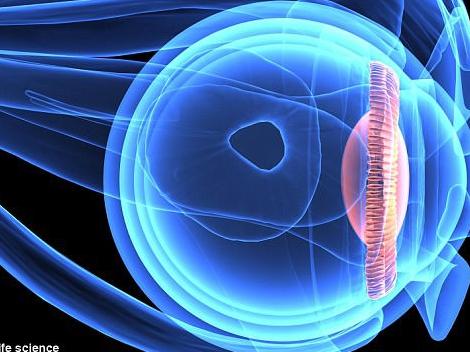 Màn hình ảnh hưởng đến thị lực như thế nào?