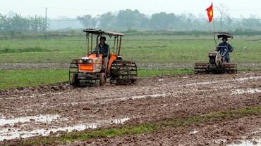 Nông dân các địa phương xuống đồng sản xuất đầu Xuân