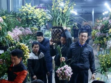 Nhập khẩu hoa và cây cảnh tăng mạnh
