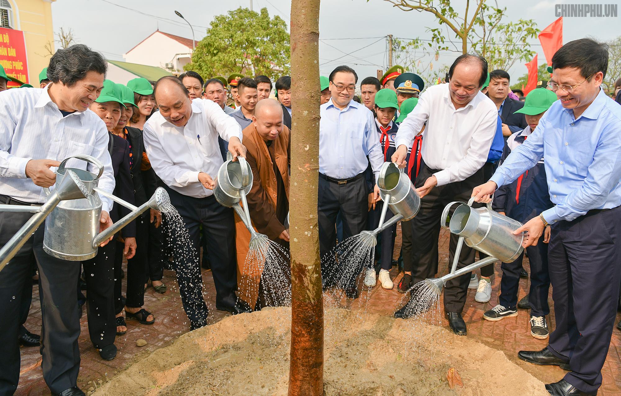 Trồng cây để làm môi trường sống xanh, sạch!