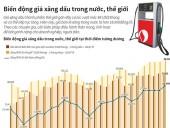 Giá xăng dầu trong nước và thế giới đang biến động mạnh