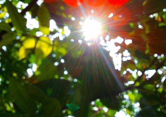 Hà Nội hửng nắng, độ ẩm không khí cao