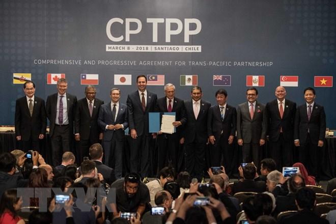 Chuyên gia Singapore: Việt Nam cần cải cách để tận dụng cơ hội CPTPP