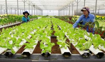 Tập trung nâng cao đời sống nông dân