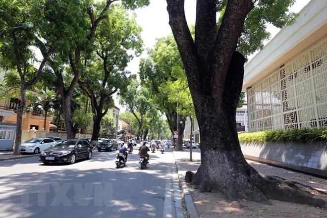 Bắc Bộ nắng mạnh, trời hanh khô, Nam Bộ đề phòng thời tiết nguy hiểm