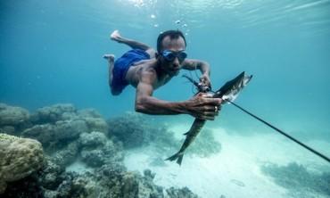 Điều kỳ diệu của 'tộc người cá' có thể nhịn thở 13 phút dưới nước, lặn sâu tới 70m