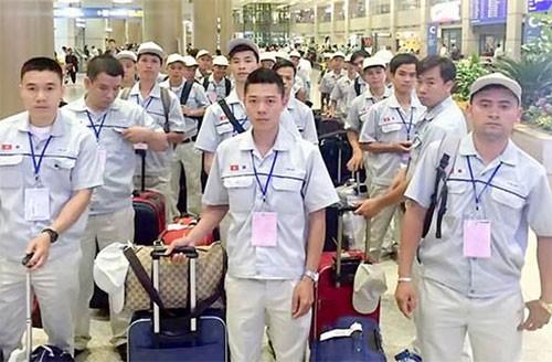Thêm nhiều cơ hội đi làm việc ở nước ngoài cho lao động Việt Nam