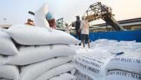 Cơ hội lớn cho doanh nghiệp Việt xuất khẩu gạo sang Philippines