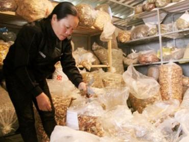 Hỗ trợ xã, thôn đặc biệt khó khăn phát triển sản xuất