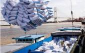 Gió đảo chiều, giá gạo xuất khẩu Việt Nam lại vượt Thái Lan