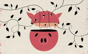 Nuôi sống não lợn trong vòng 1 ngày rưỡi sau khi bị tách khỏi cơ thể