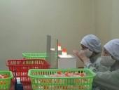 Tăng thuốc nội ở bệnh viện tuyến tỉnh lên 50%