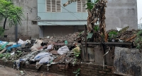 Đừng biến đất trống thành bãi tập kết rác