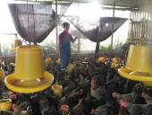 LĐLĐ huyện Thanh Oai: Mong muốn đoàn viên tiếp tục được vay vốn