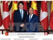 [Infographic] Việt Nam là đối tác quan trọng của Canada