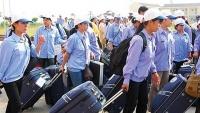 5 tháng đầu năm 2019: Hơn 54.000 lao động đi làm việc ở nước ngoài