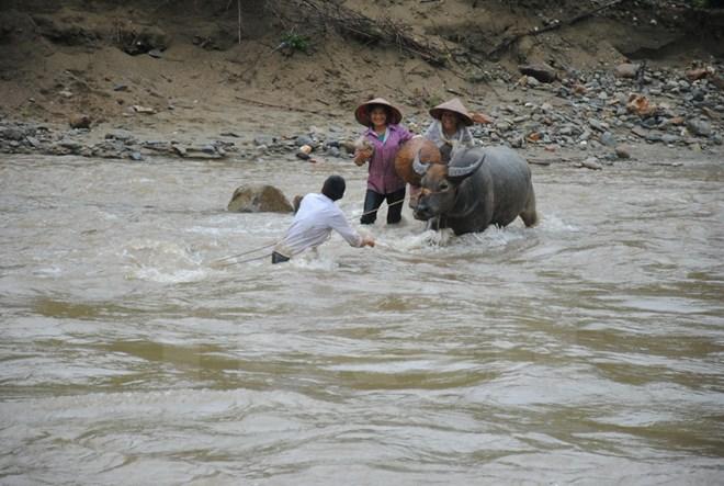 Lũ sông Thao và các sông từ Thanh Hóa đến Nghệ An tiếp tục lên nhanh
