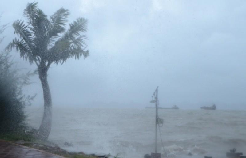 Lại xuất hiện vùng áp thấp mới trên biển Đông, có khả năng thành cơn bão số 5?