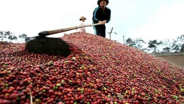 (Infographic) Biến động 8 mặt hàng xuất khẩu chủ lực của Việt Nam