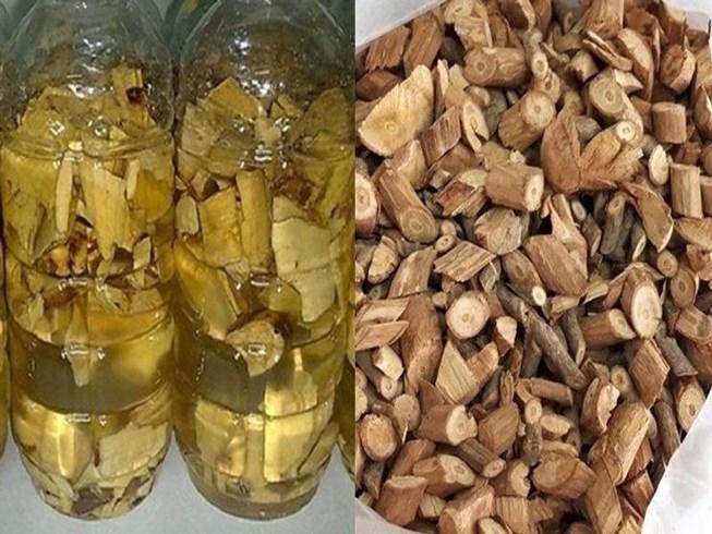 Uống rượu rễ cây: Coi chừng tử vong