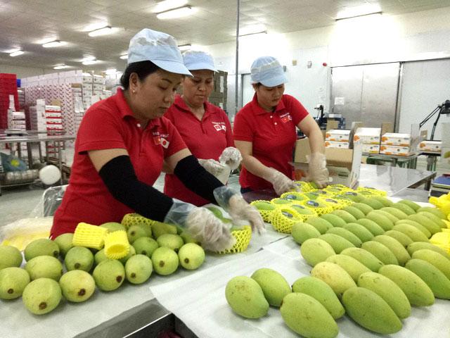 Nông sản Việt Nam: Nỗ lực đạt mục tiêu xuất khẩu