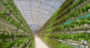APEC 2017: Đẩy mạnh chuyển giao kỹ thuật nông nghiệp tiên tiến