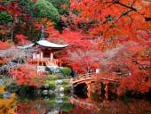 Bật mí giúp bạn về mùa du lịch đẹp nhất trong năm